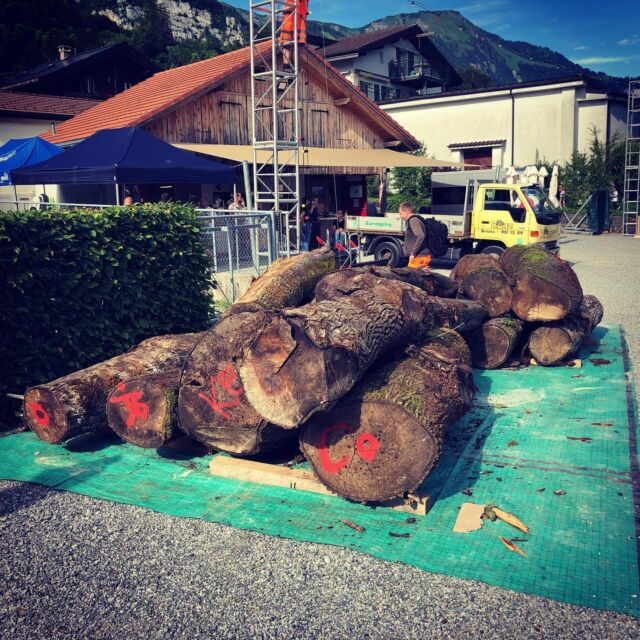 Look! Isn't that amazing. Those big logs, already met very kind people, my stunning office view of this week… Am I nervous? Nah… maybe just will have a sleepless night 😂   #holzbildhauer #woodcarver #symposiumbrienz2021 #theexperiencecounts